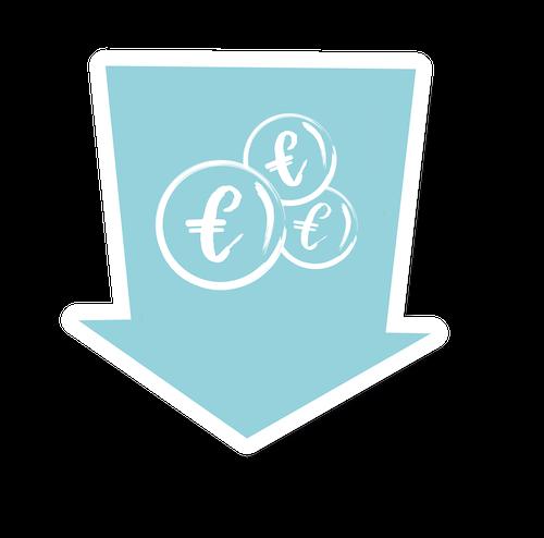 Sprizzero Icon Euro